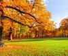 Vign_Nature-s-Seasons-image-natures-seasons-36241626-500-313